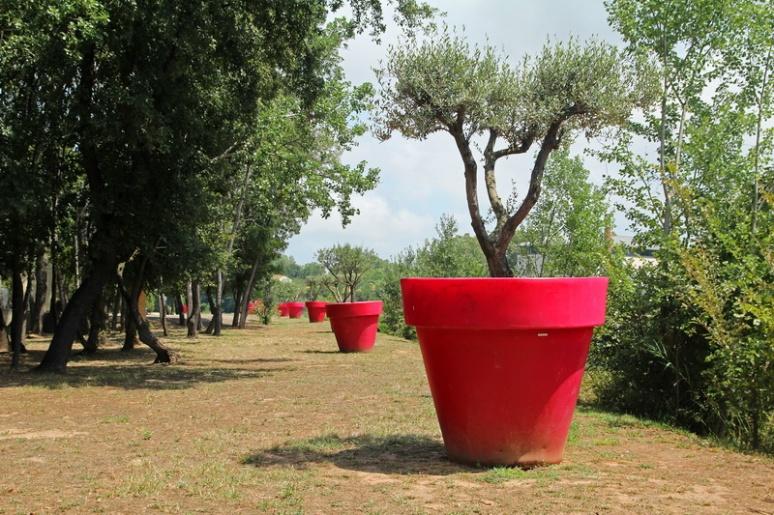 Parc de Belle Isle, à Agde (34).
