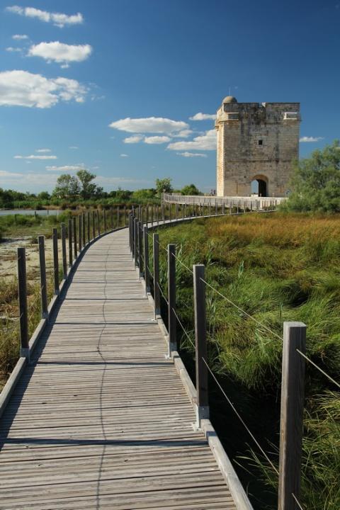 La Tour Carbonnière, près d'Aigues-Mortes (Gard).