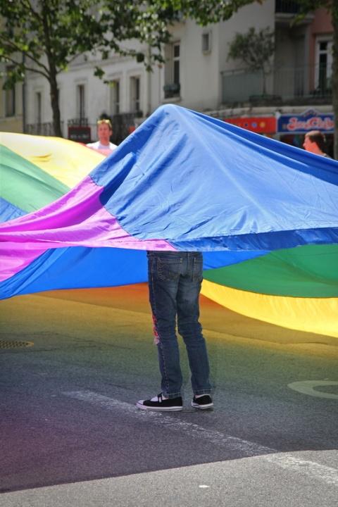 Rennes - Marche LGBT 2014 (1)