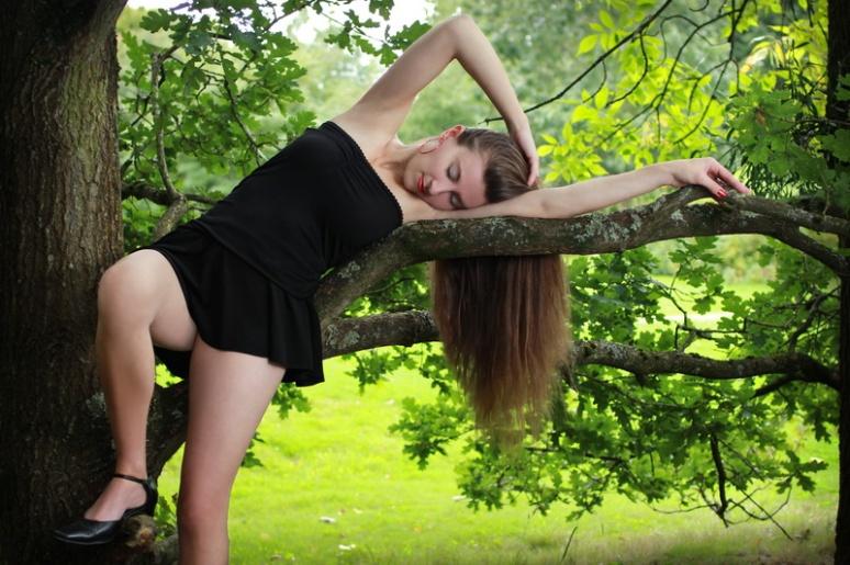 Sur mon arbre perchée (2)