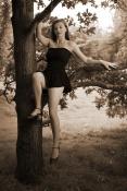 Sur mon arbre perchée (NB1)