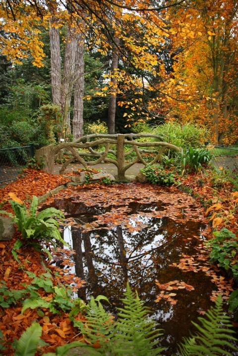 Caen - Le Jardin des Plantes
