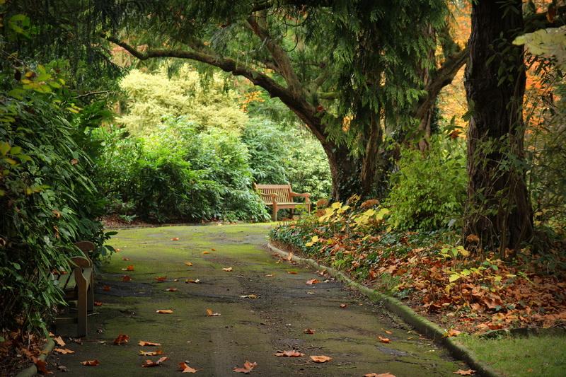 caen le jardin des plantes - Jardin Des Plantes Caen
