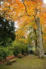 Caen – Le Jardin des Plantes(8)