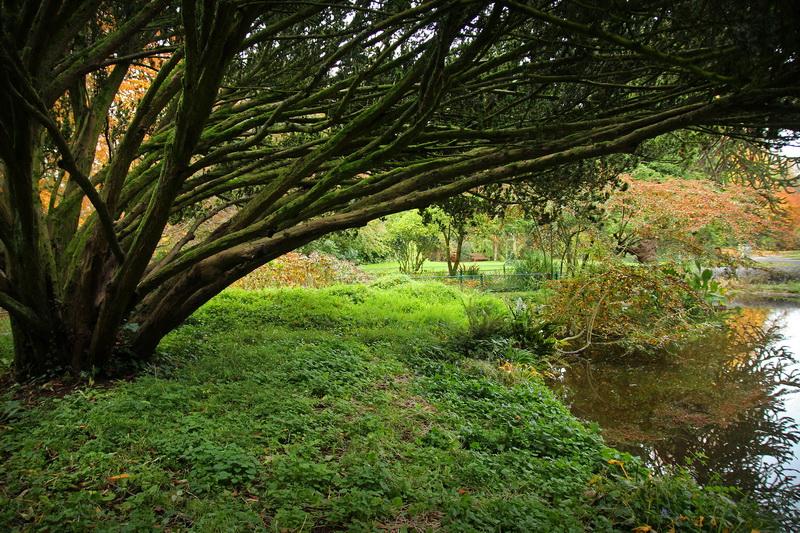 Caen jardin des plantes filimages - Le jardin des plantes caen ...