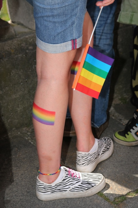 Rennes – Marche LGBT 2015 (17)