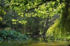 Parc animalier de Branféré (Le Guerno,Morbihan)