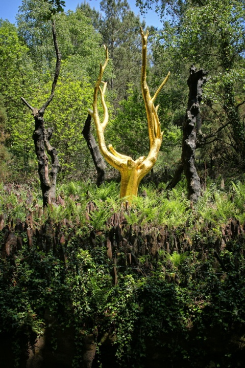 L'Arbre d'Or (Forêt de Brocéliande)