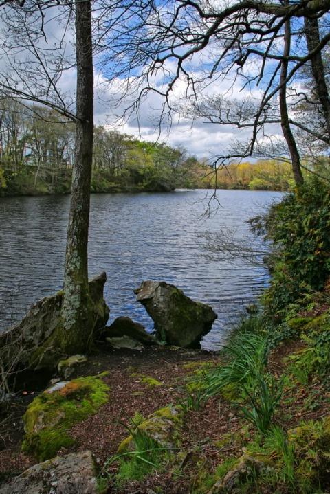 Muzillac (Morbihan), l'étang de Pen Mur.