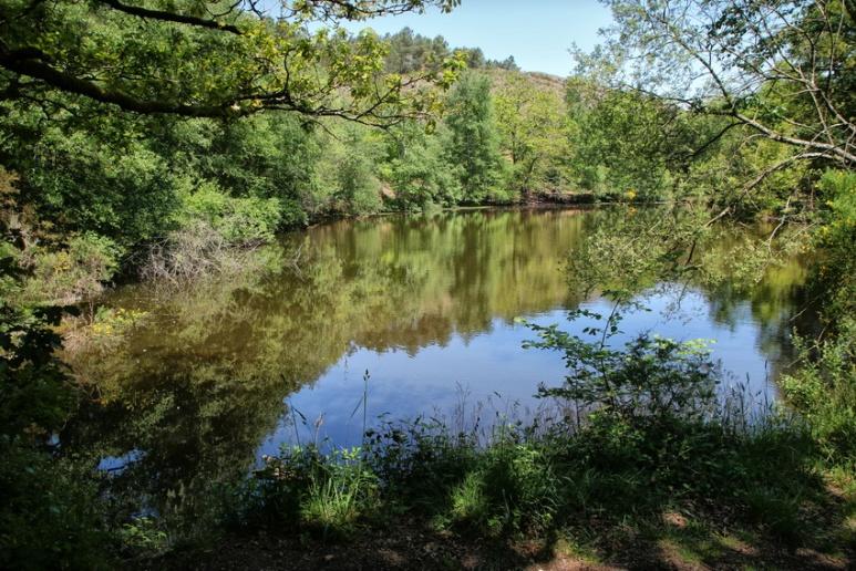 Le Miroir aux Fées (Forêt de Brocéliande)