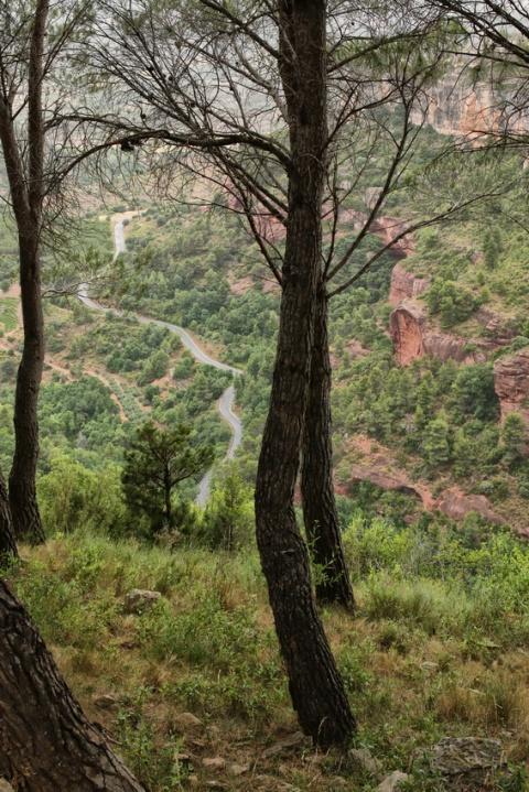 La route menant à Siurana de Prades (Espagne, Catalogne)