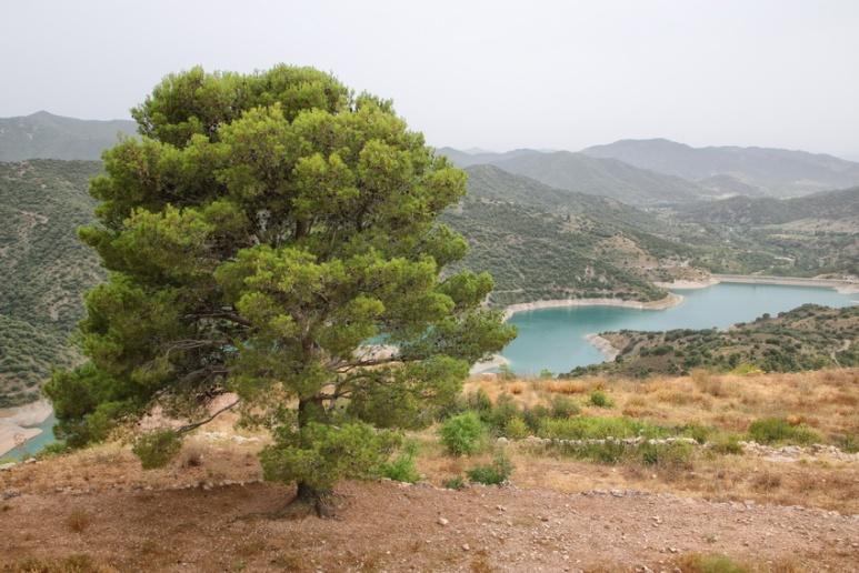 Siurana de Prades (Espagne, Catalogne) - Juillet 2016