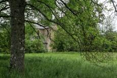 L'abbaye derrière l'arbre