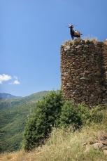 Sur les ruines du château deBelpuig